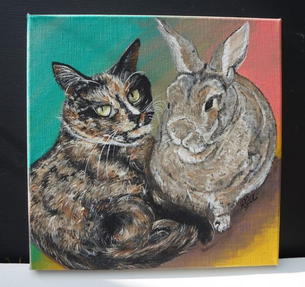 portrait of a rabbit and a cat on a pastel cyan, yello and coral background